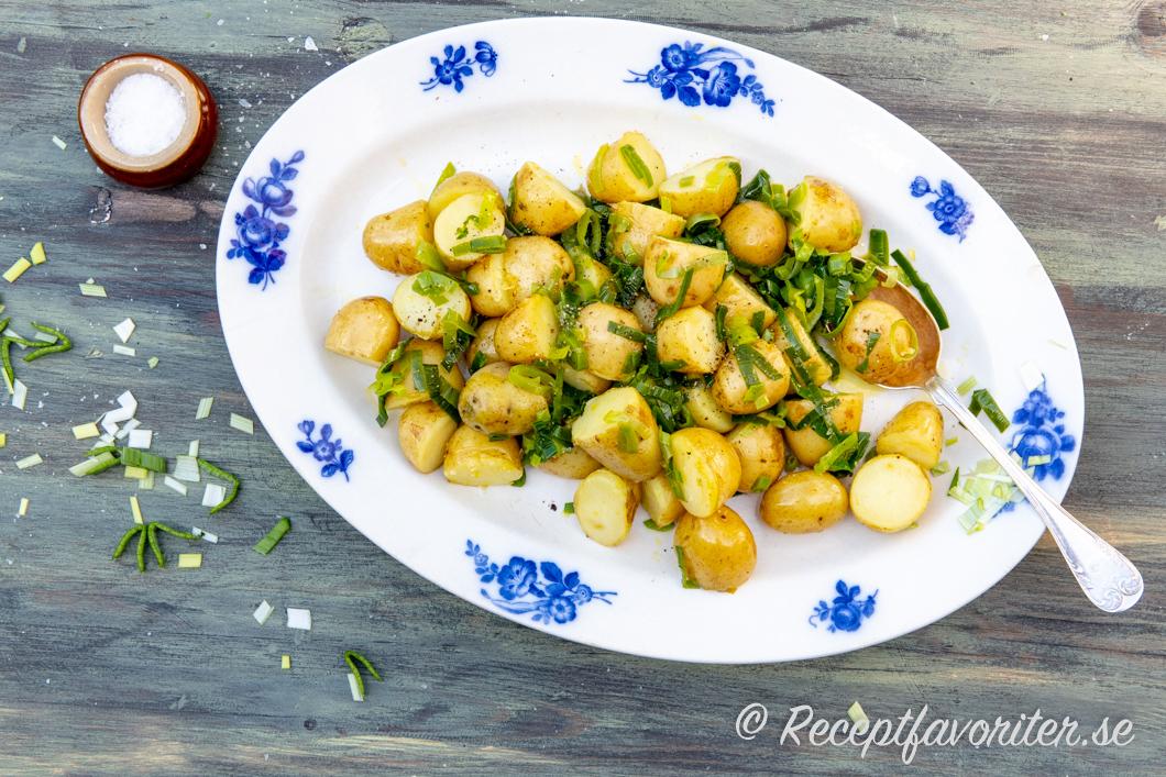 potatissallad till många