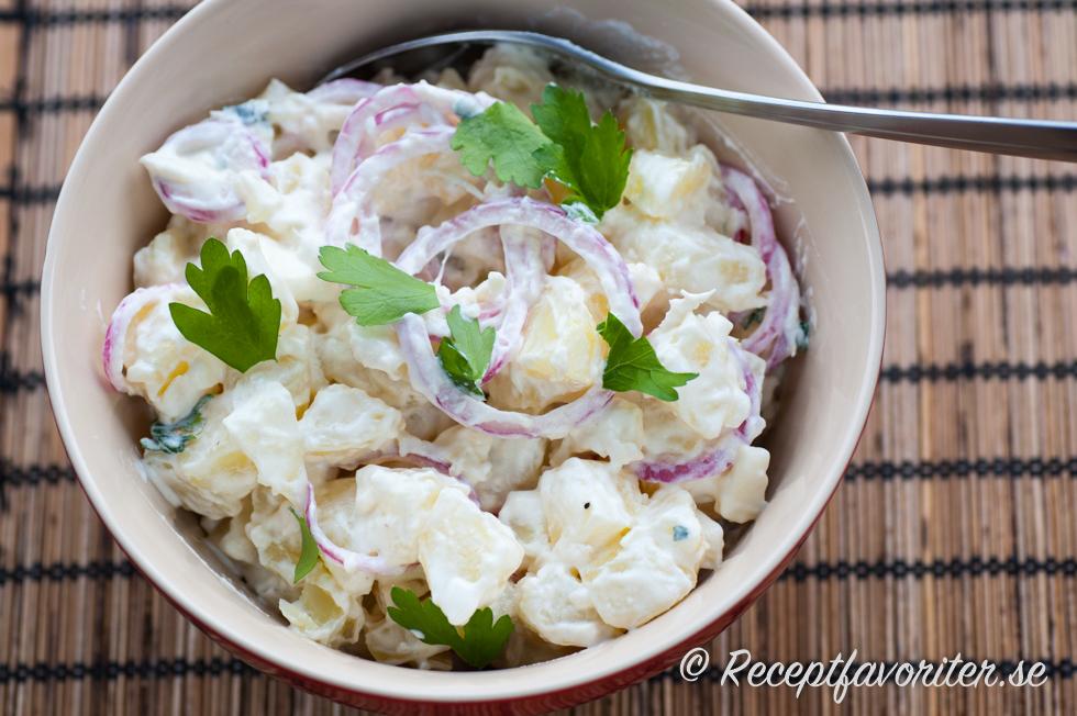 Yoghurtsas med gurka och rodlok