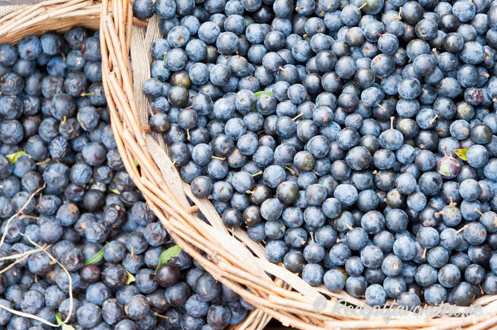 slånbärslikör slånbär recept