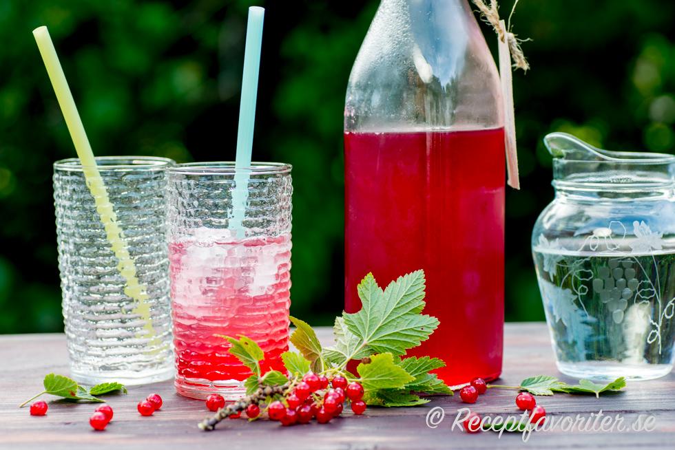 röd vinbärssaft utan konserveringsmedel