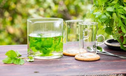 Brygg eget te av citronmeliss så får du ett gott te med citronsmak.