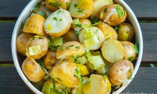 Färskpotatissallad med olivolja, purjolök och valnötter i skål