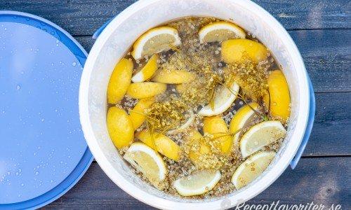 Fläderblommor och citron som lakas ur i vatten med socker