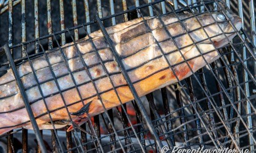 Grilla gärna fisken i ett fiskhalster så blir den lätt att vända och hantera på grillen.