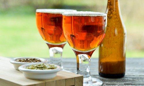 Hembryggd öl typ IPA - en fyllig, besk och smakrik öl.