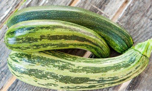 Tre zucchinis från min hemmaodling