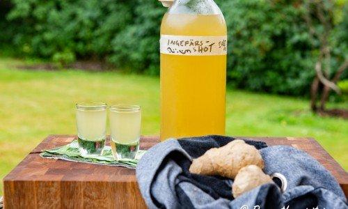 Ingefärsshot i flaska och shotglas
