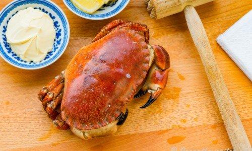 Kokt krabba serverad med tillbehör