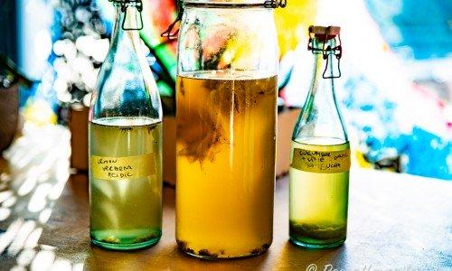 Kombucha i flaskor