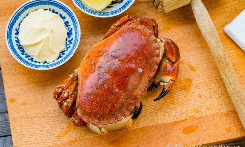 Recept med krabba