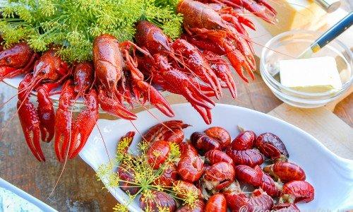 Gör egen kräftlag och sätt god smak på hemmafiskade eller köpta kräftor eller kräftstjärtar med skal.