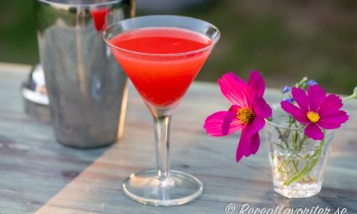 Monkey Gland cocktail i martiniglas.