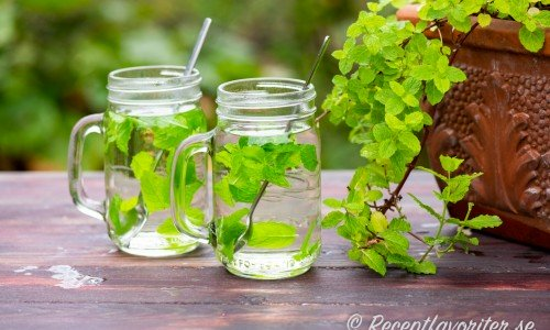 Te med myntablad får en frisk och god mintsmak - ett klassiskt örtte.