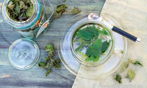 Te med nässelblad får en grön och lite örtig smak.