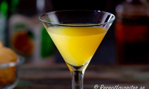 Paradise coktail i martiniglas