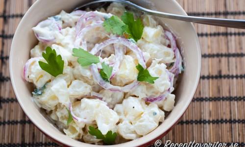 Potatissallad med yoghurt, äpple och rödlök