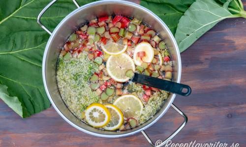 Fläderblommor, strimlad rabarber och skivad citron som får dra så smaken lakas ur.