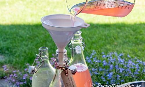Rabarber- och flädersaften silas upp på flaska