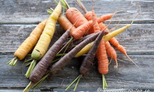Fina ekologiska knippmorötter i olika färger.