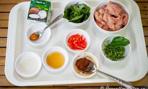 Ingredienser till thaikycklinggrytan