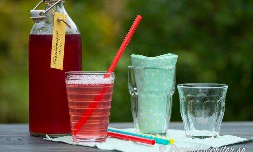 Ett glas god och läskande iskall rönnbärssaft