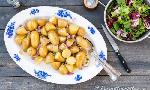 Potatisen blandad med Dijon- och senapsdressingen på fat.