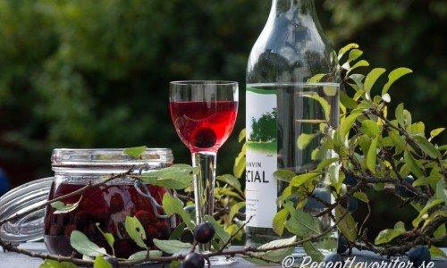 Slånbärssnaps blir vackert röd. Ett brännvin med smak av slånbär