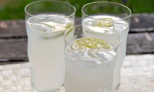 Sommardrink med gin, lime och schweppes