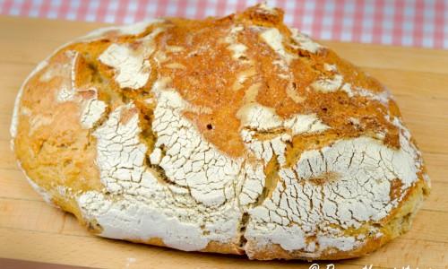 Surdegsbröd jäst som vanligt utan brödkorg och sedan gräddat.