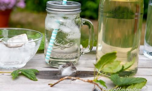 Svartvinbärsbladssaft serverad med is i glasmugg med sugrör