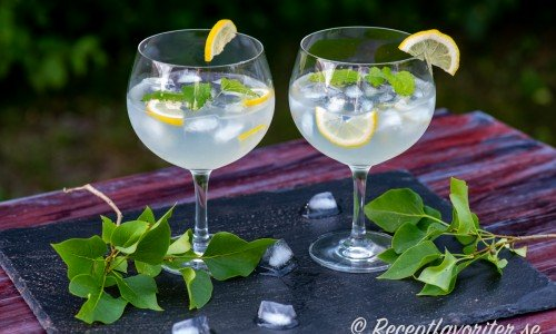 Syren Gin&Tonic i kupor med citron och citronmeliss.