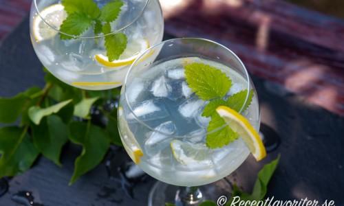 Syrensaft passar bra ihop med gin och tonic.