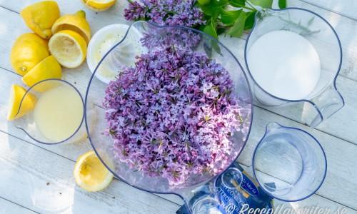 Ingredienser till syrensaften - rensade syrenblommor, citron, citronsyra, socker och natriumbensoat.