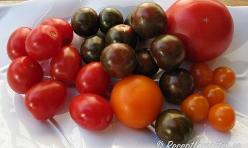 Recept med tomater