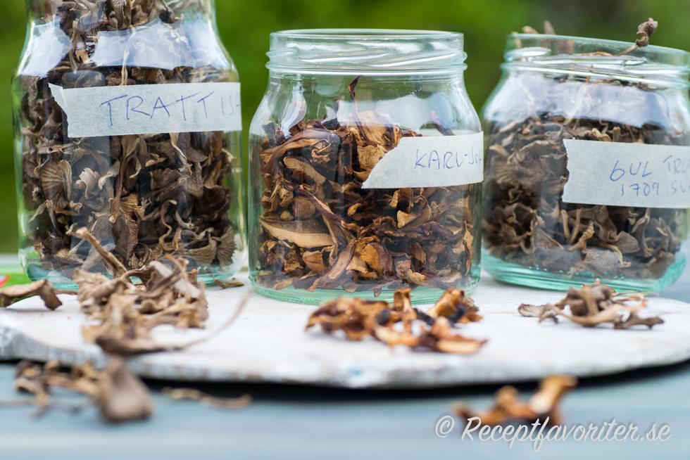 förvaring av torkad svamp