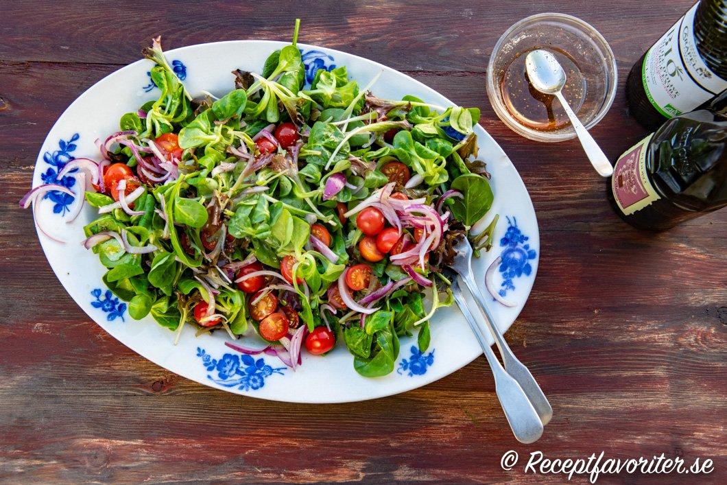Grönsallad på fat med rödlök och tomater