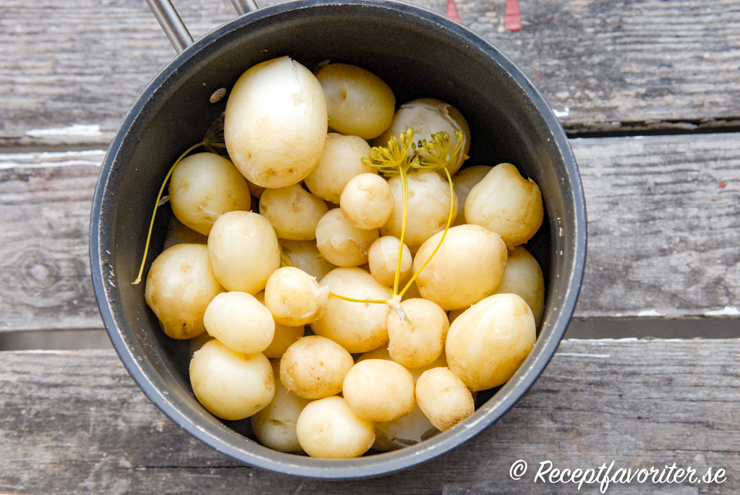 Kokt hemodlad potatis i kastrull