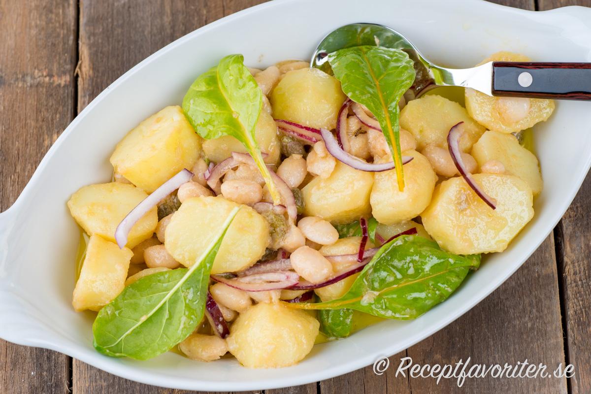 Kokt potatis som sallad med salt kapris, vita bönor, rödlök och mangoldskott.