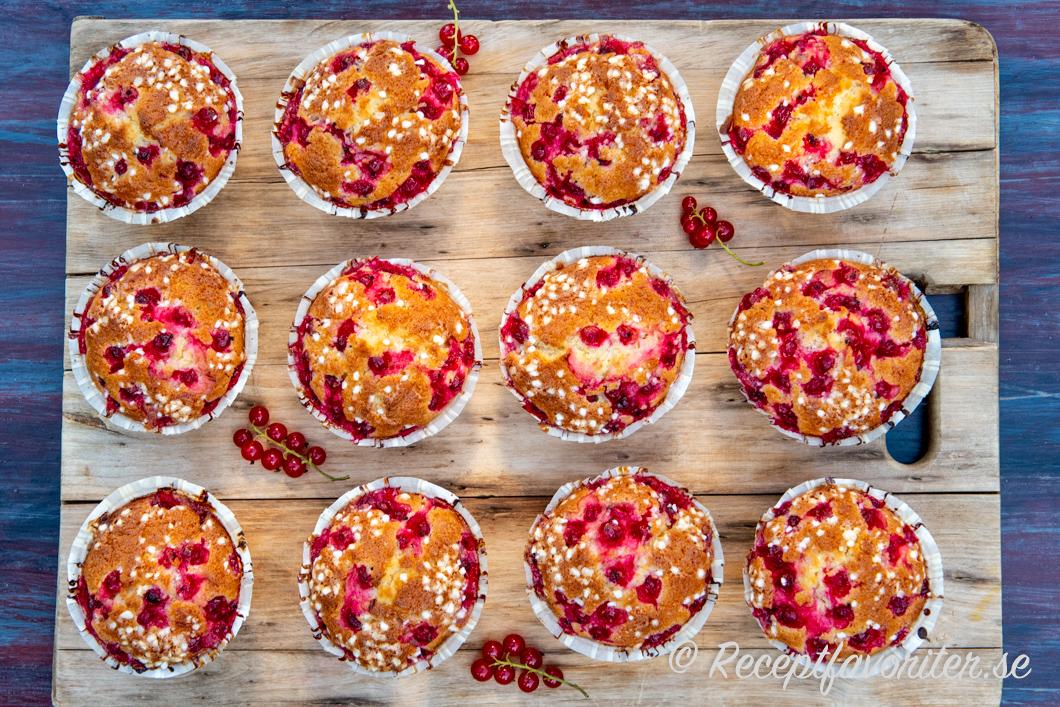 Vinbärsmuffins serverade till fikat