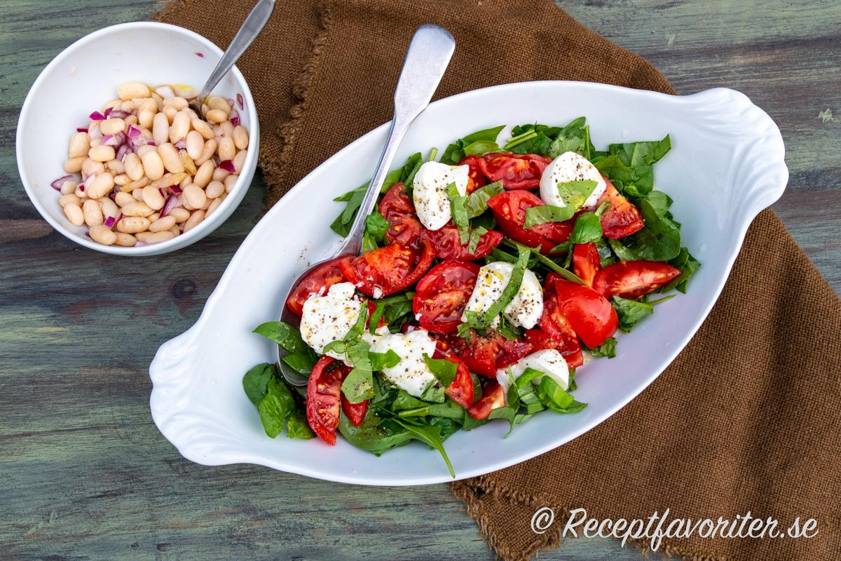 Vita bönorna passar att kombinera med en tomat och mozzarellasallad.