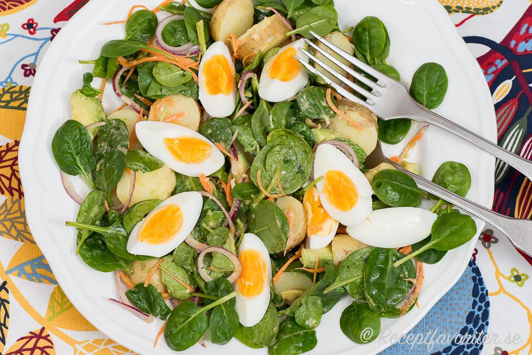 En grön potatissallad med ägg, spenat, rödlök och senapsdressing.